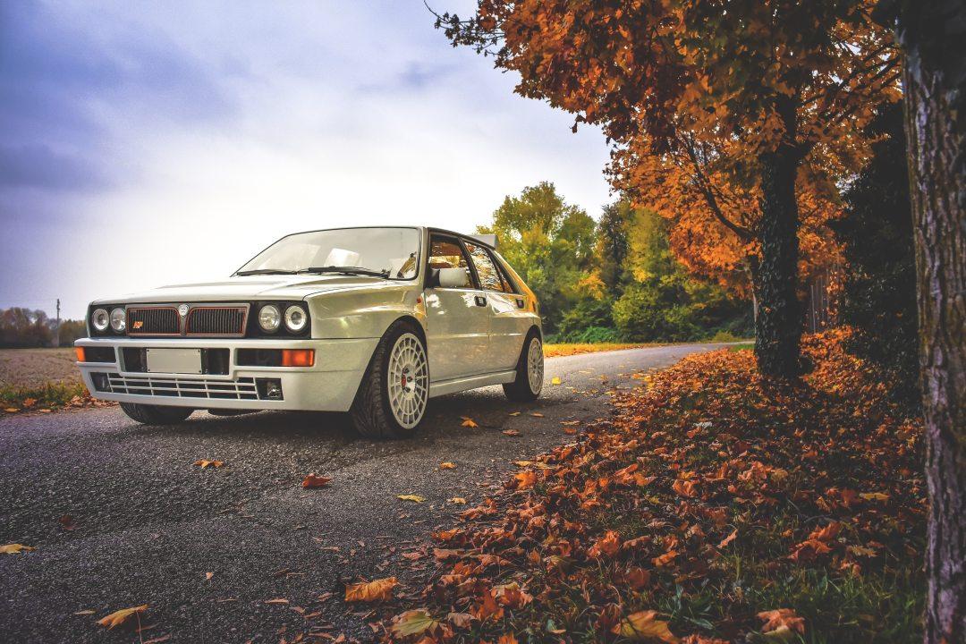 asphalt-auto-autumn-327236